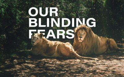 Our Blinding Fears